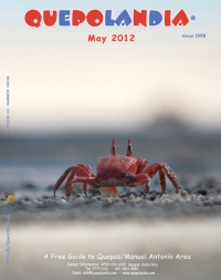 cover-may-12