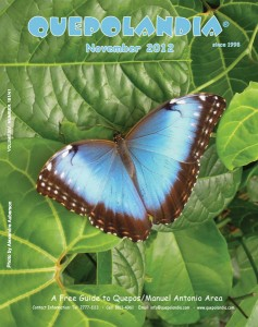 Cover November 2012