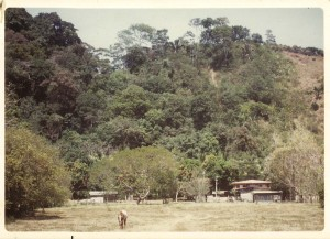 La Casona 1977