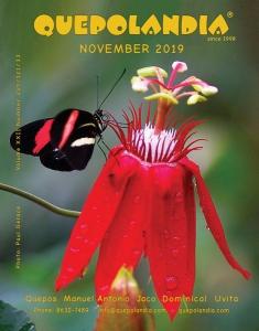Cover-Nov-19
