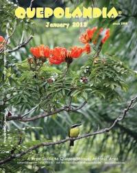 cover-jan-13
