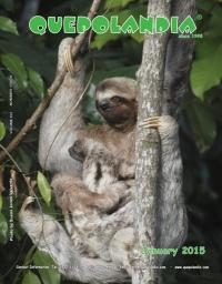 cover-jan-15