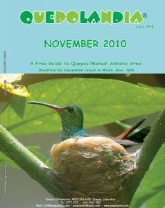 cover-nov-2010